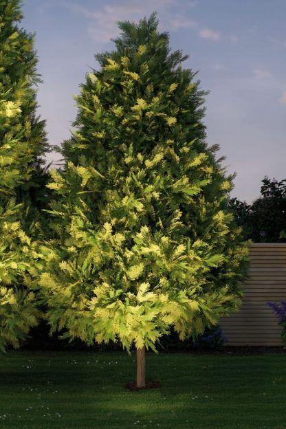 Reflektor zewnętrzny Cone - do podświetlenia ogrodu